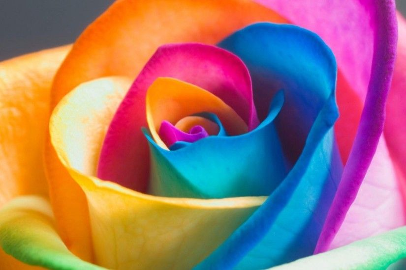 9. rainbow-flowers-wallpaper10-600x338