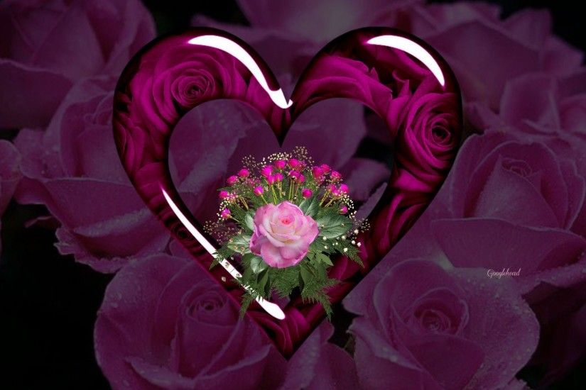 purple hearts and roses | Purple Hearts And Roses Wallpaper Red roses and  hearts wallpapers .