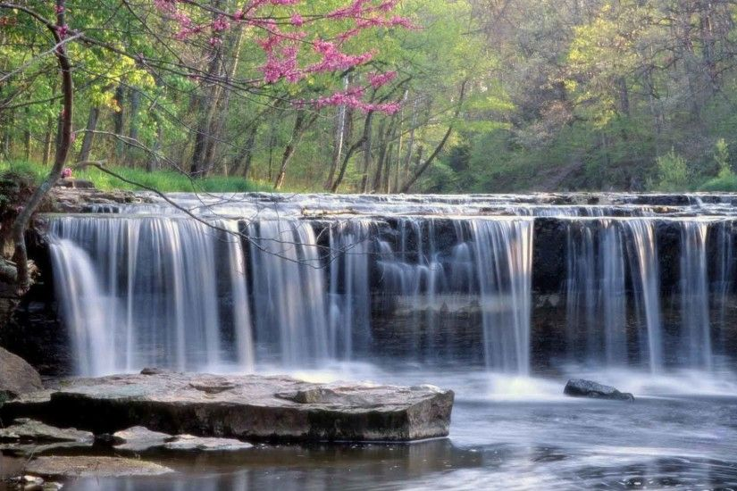 Waterfalls Forest Waterfall Rivers Trees Background Wallpapers Of Nature