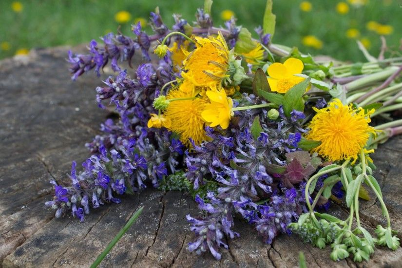 Yellow and purple wildflower bouquet wallpaper