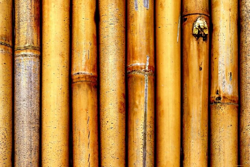 vertical bamboo background 2400x1590 for windows 7