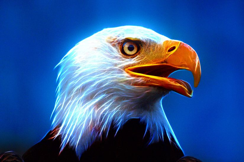 Eagle Wallpapers, Download Eagle HD Wallpapers for Free, GuoGuiyan  1920×1440 Eagle Wallpapers