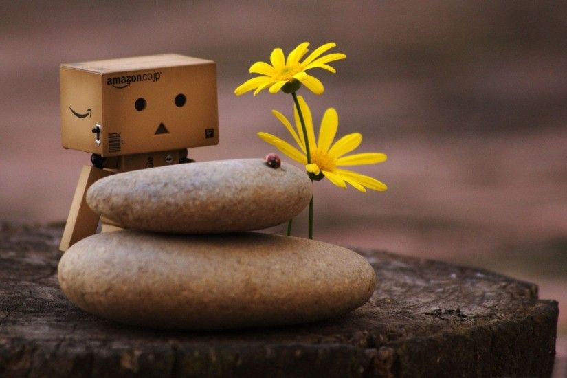 danbo full hd