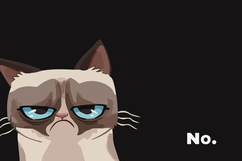cat grumpy wallpaper