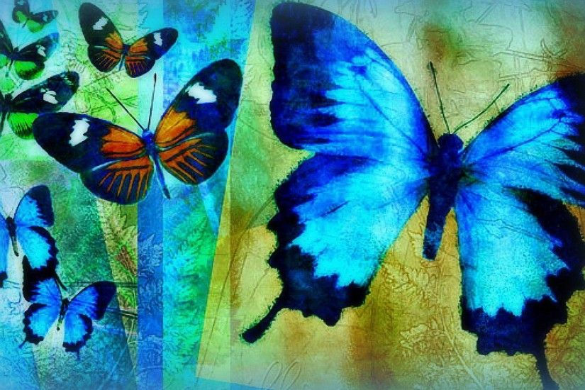 blue butterfly painting HD wallpapers