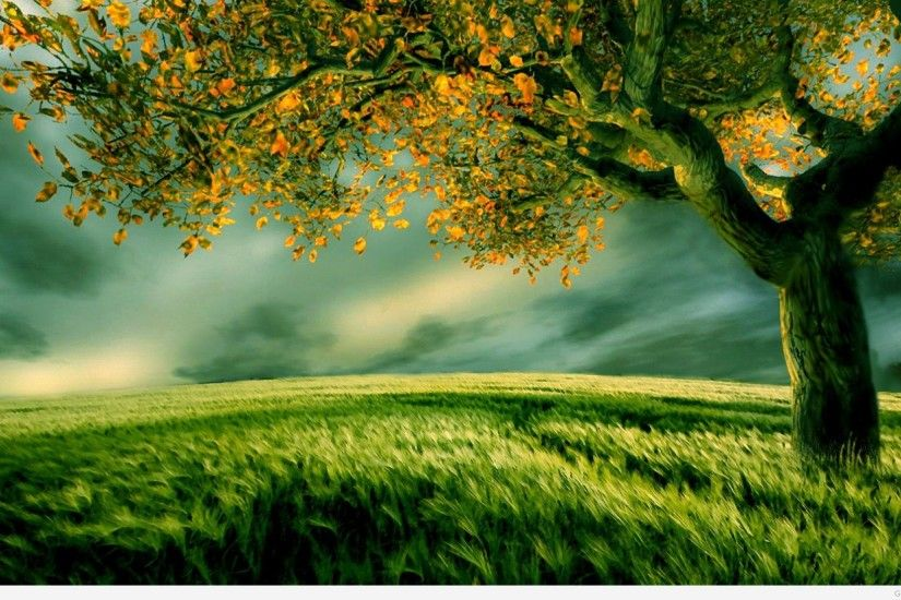 Wallpaper Name New Nature Love Wallpaper 17 Quotes Nature Green Field  Jootix Resolutions_598776 ...