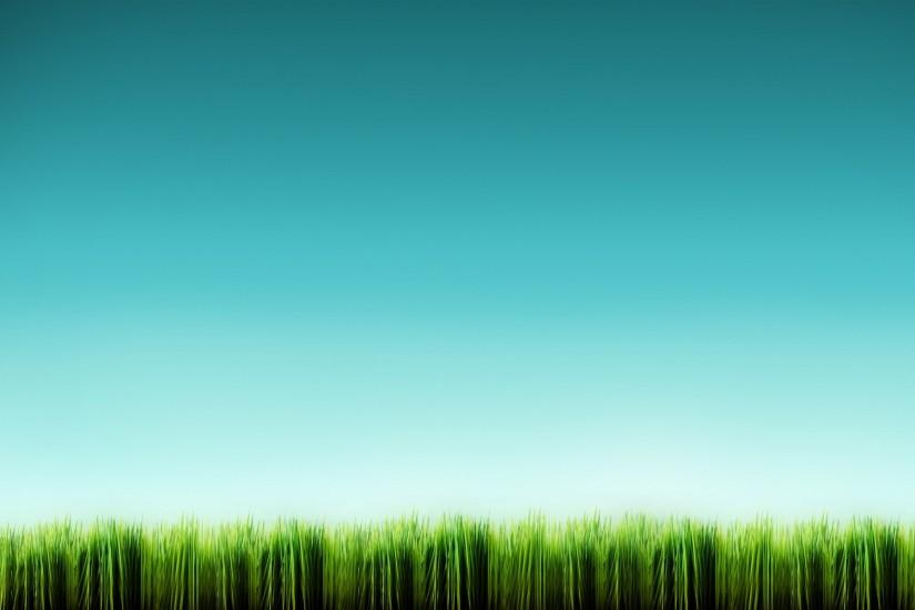 most popular grass wallpaper 1920x1200 4k