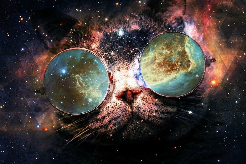 Space Cat Wallpapers Hd