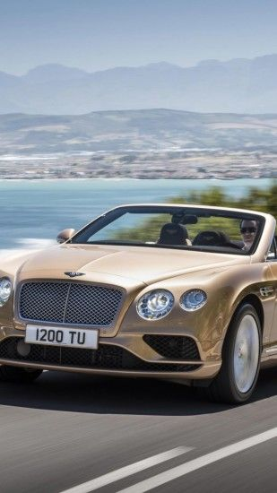 Preview wallpaper bentley, continental gt, concept, convertible 1440x2560