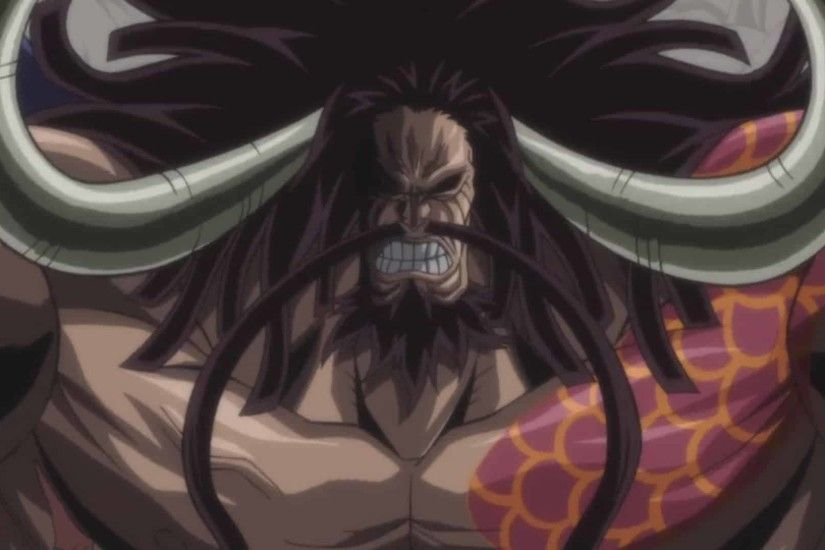 Kaido is one of the four Yonko who rule over the New World. Kaido has an  incredibly powerful pirate crew. His pirate crew is called the Beast  Pirates.