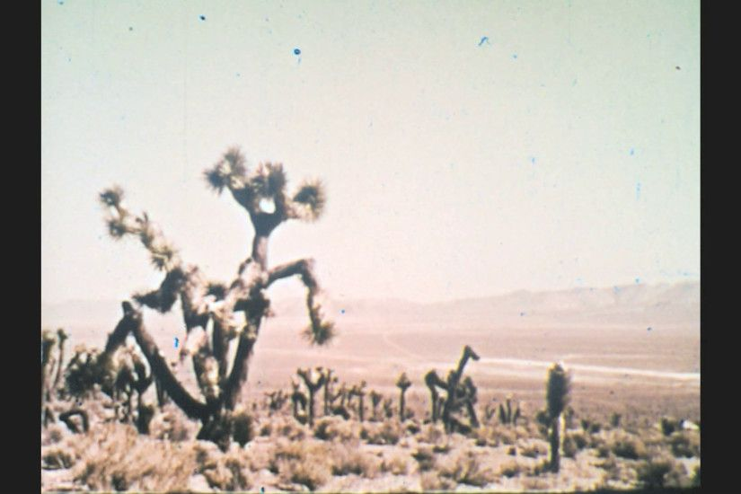1970s: UNITED STATES: cactus plants in desert. Nuclear explosion in desert. Mushroom  cloud formation. Stock Video Footage - VideoBlocks