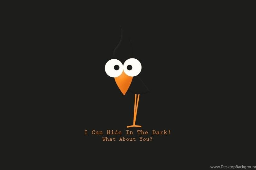 Bird text funny hd wallpapers
