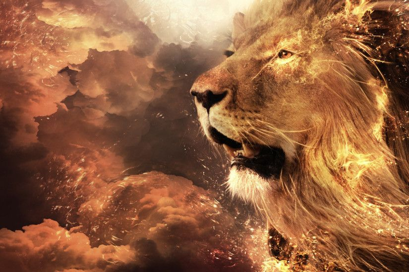 Lion Wallpaper HD | Places to Visit | Pinterest | Narnia lion, Lions and  Narnia