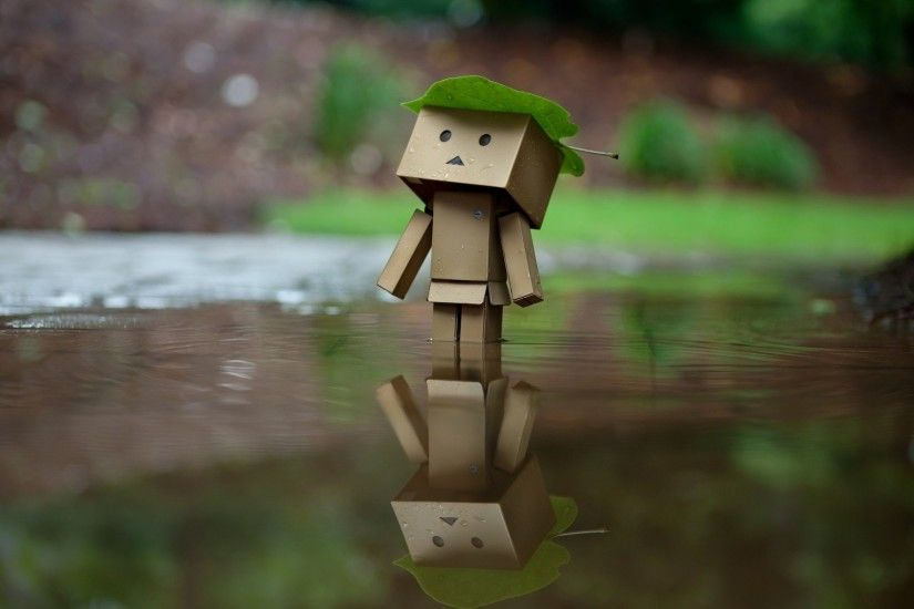 danbo wallpaper 227