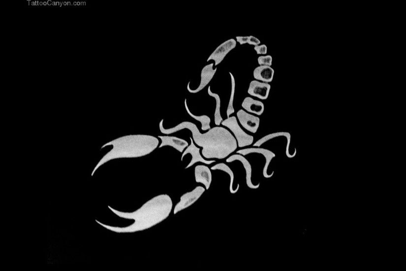 Scorpion wallpaper - 996564