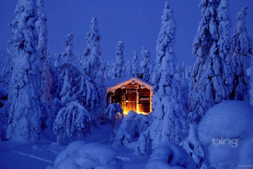 Bing Highlighted House in Deep Snowy Forest picture