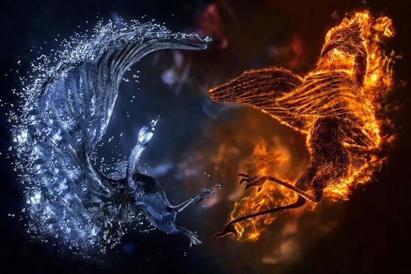 awesome 3D fire ice bird HD wallpapers
