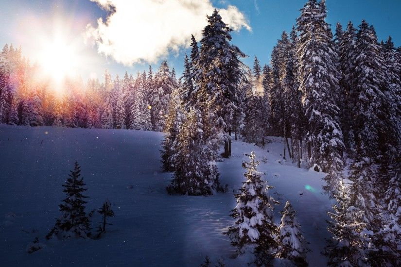 2 of the best Winter pictures are shared here under the Nature collection  with permission of talented photographer - Chris Frank · Both Winter  wallpapers ...