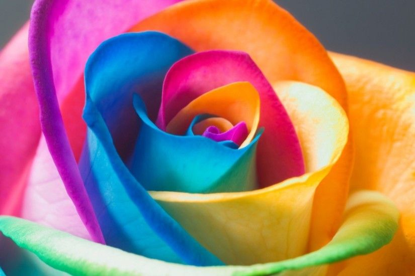 Rainbow Flower Wallpaper Desktop Rainbow Wallpaper Hd on WallpaperGet.com  ...