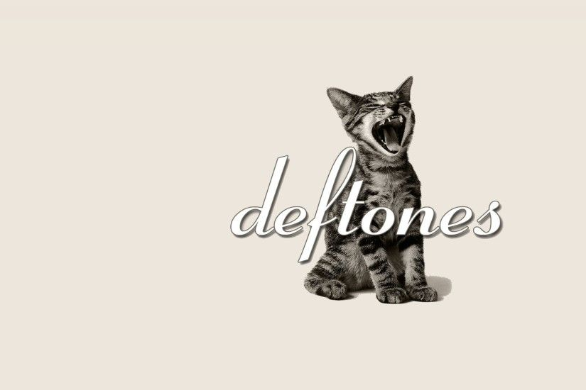 DEFTONES alternative metal experimental rock nu-metal heavy hard cat kitten  wallpaper | 2560x1440 | 549677 | WallpaperUP