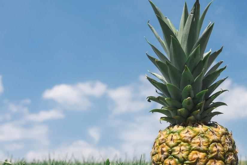 pineapple background 2000x1440 4k