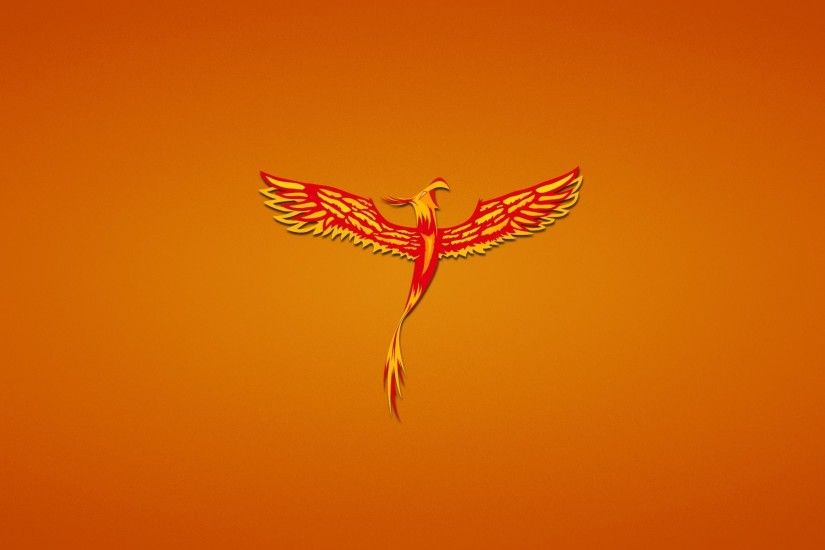 phoenix poultry red phoenix red background fenix minimalism