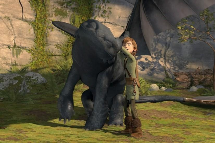 toothless How to Train Your Dragon Hiccup wallpaper background