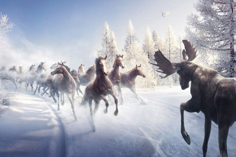 Moose Tag - Animals Paintings Trees Snow Horses Battle Moose Landscapes Art  Nature Winter Wallpapers Of