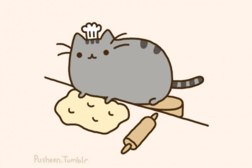 pusheen wallpaper 1920x1080 for desktop