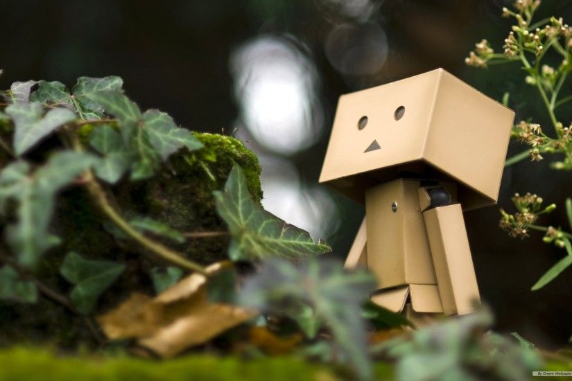 Danbo Wallpapers Hd wallpaper