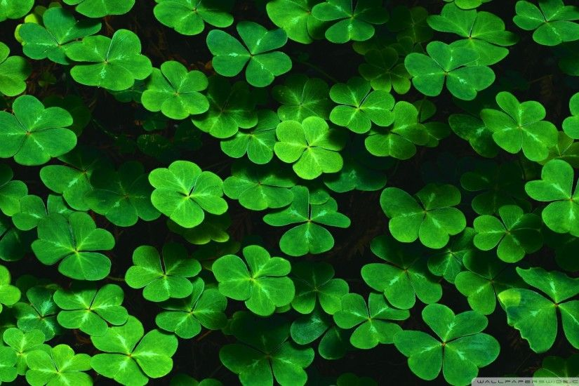 St Patrick's Day Wallpapers, Backgrounds for My PC, Desktop, Laptop, Mobile