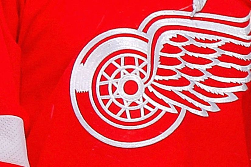 NHL, Red Wings considering legal action after team logo used at white  nationalist rally | NHL | Sporting News