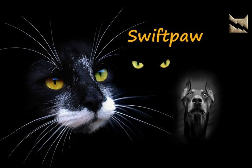 Warrior Cats Mine Yours Ours Awesome Hd Digital Plasma Wave Wallpapers