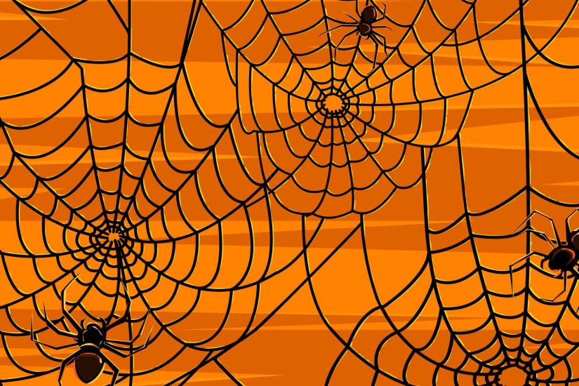Spiders Webs wallpapers HD free - 366645