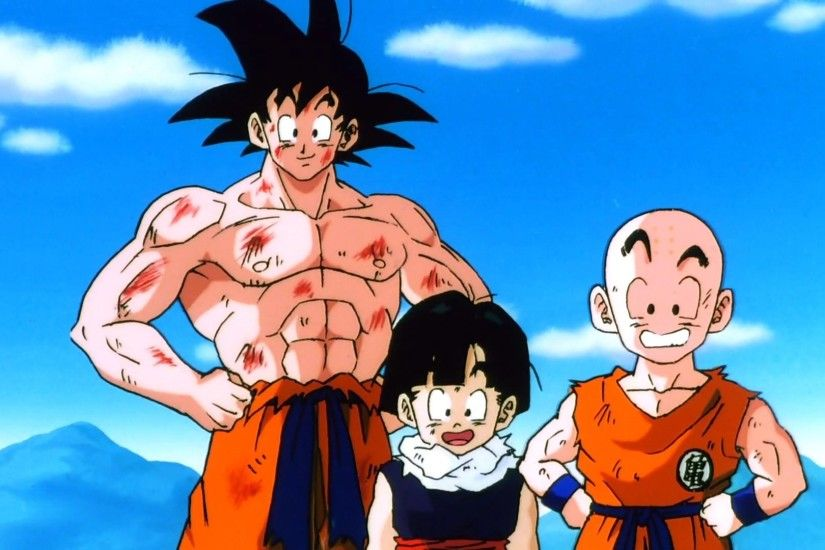Anime - Dragon Ball Z Krillin (Dragon Ball) Gohan (Dragon Ball) Goku