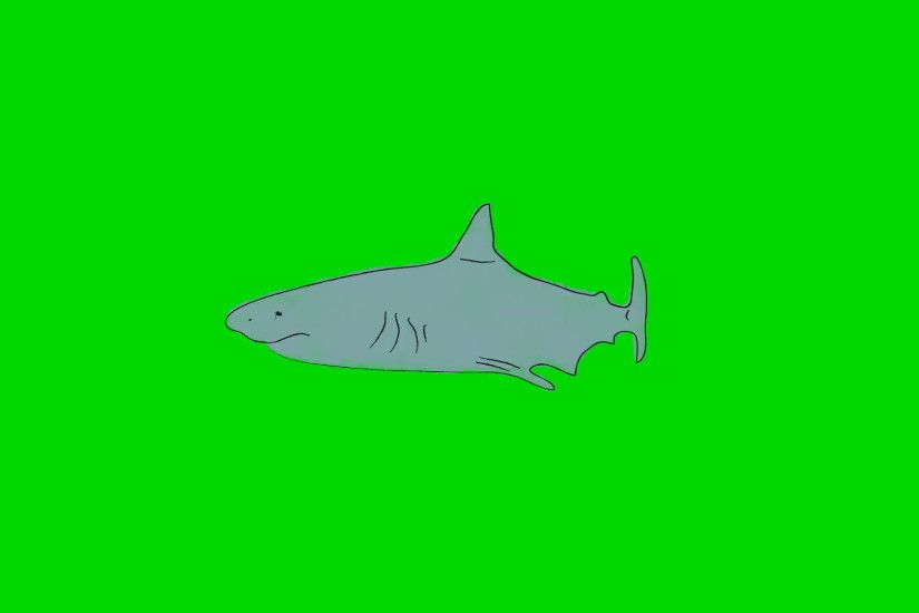 Real Cartoon Shark Swimming on a Green Screen Background