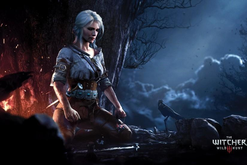 new witcher wallpaper 1920x1200