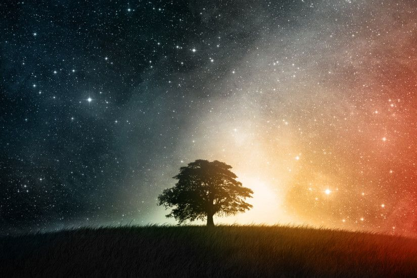 Lonesome tree in a starry sky