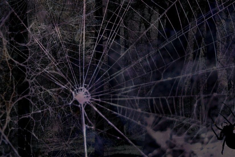 Creepy Halloween Spider Web Backgrounds