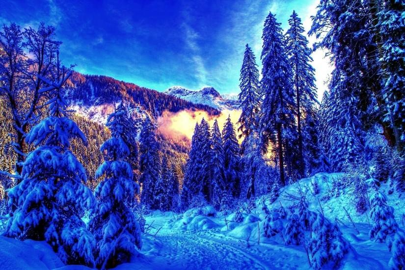 best winter background 1920x1200 for android tablet