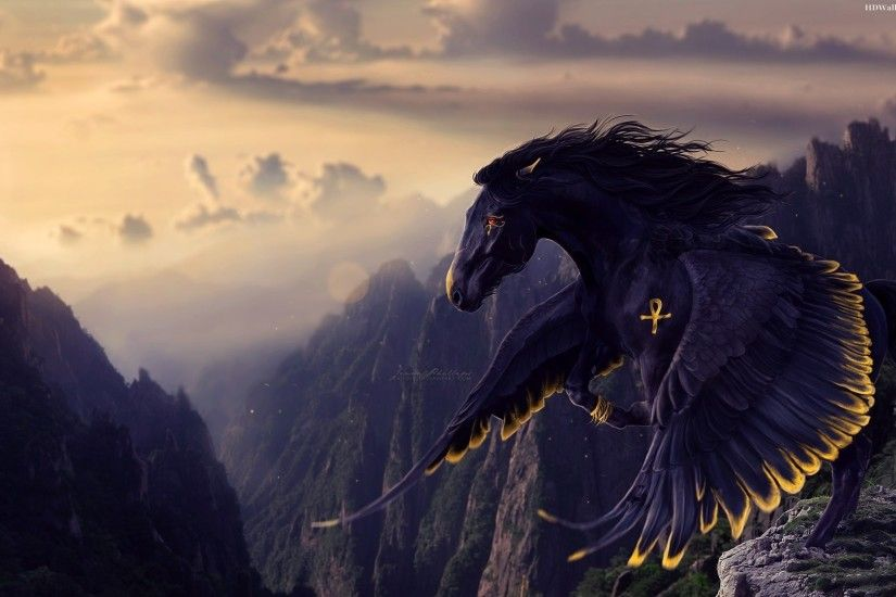 fantasy horses images | Black Horse Wings Images, Pictures, Photos, HD  Wallpapers