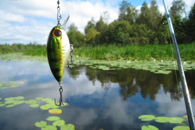 Wallpapers For > Fishing Lure Wallpaper