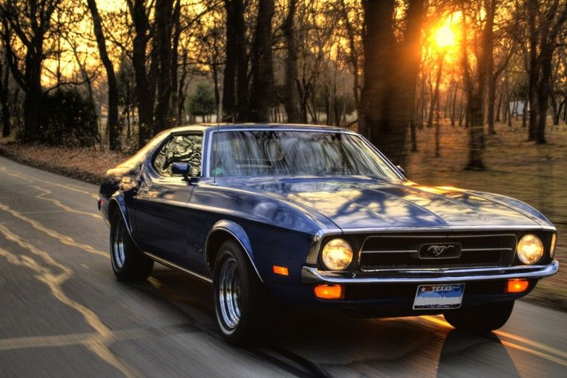 car, Ford, Ford Mustang, Sunset, Trees, Road, Muscle Cars Wallpapers HD /  Desktop and Mobile Backgrounds