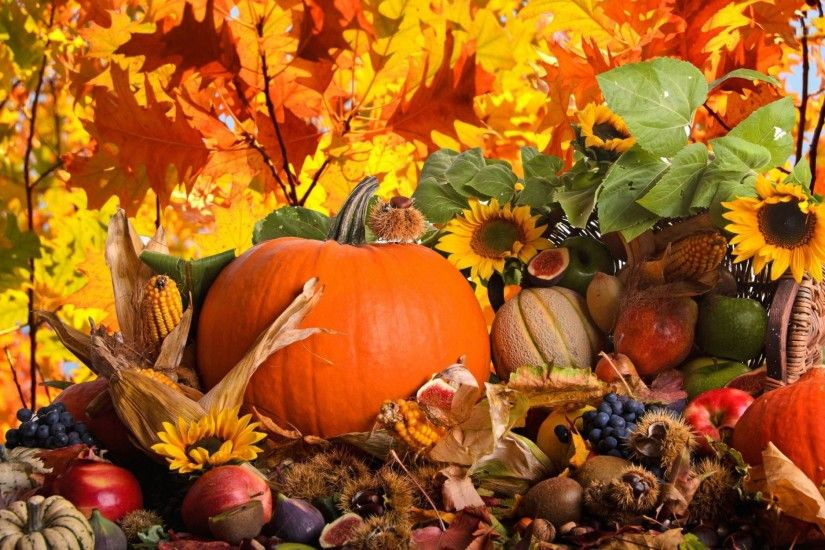 Thanksgiving Wallpapers For Desktop Wallpapers HD Wallpapers 2560×1600
