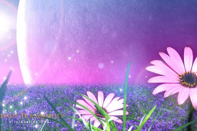 relaxing wallpaper 03 - Flower field