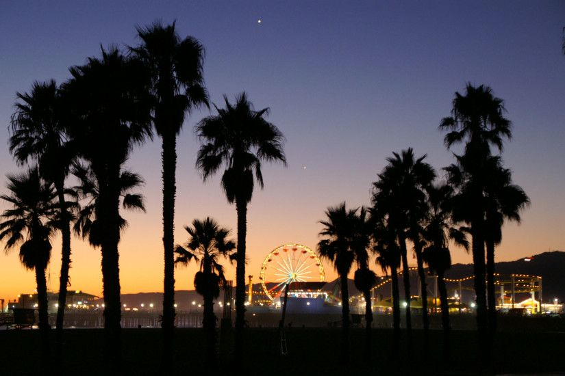 California Palm Trees Beach