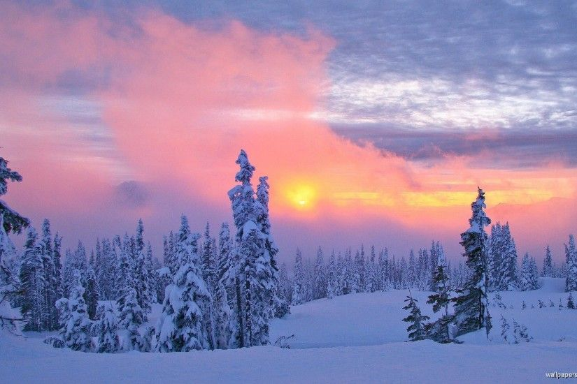 Beautiful Finland Winter, Finnish Winter Landscape in K (ultra HD Beautiful  Winter Scenery Wallpapers Wallpapers)