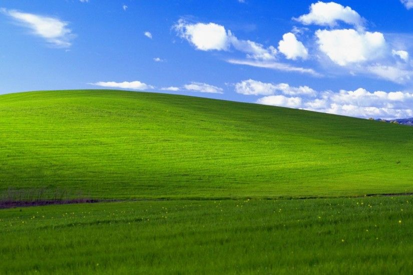 Popular hill in Windows XP wallpaper 'Bliss' may have survived California  brush fire | Inquirer Technology
