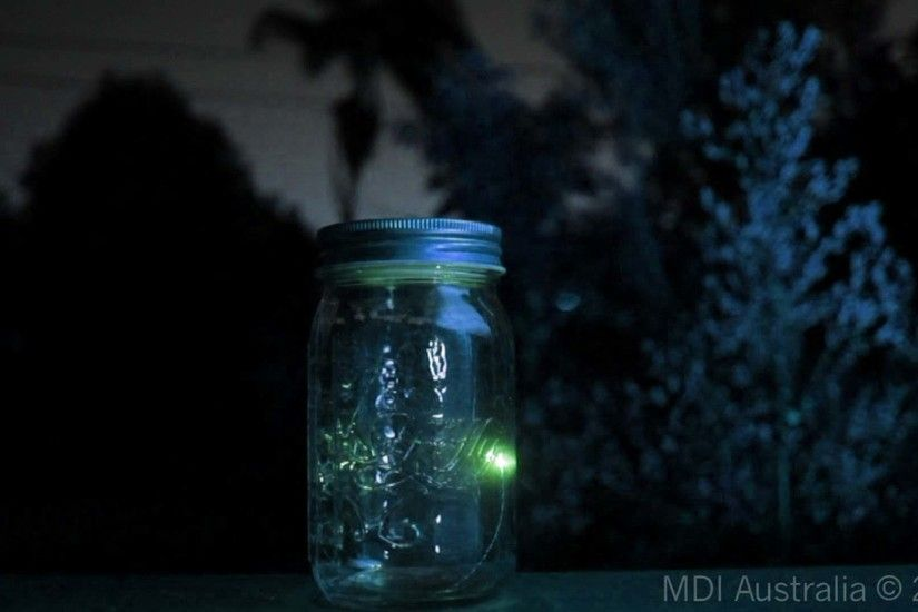 Images For > Fireflies In A Jar Wallpaper