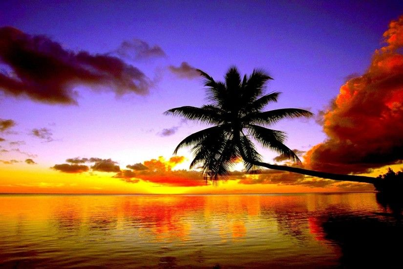 Tropical Beach Sunset Wallpaper Free Desktop 8 HD Wallpapers .